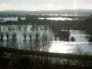 The Somerset Levels in full flood. (from www.dillington.com/blog)